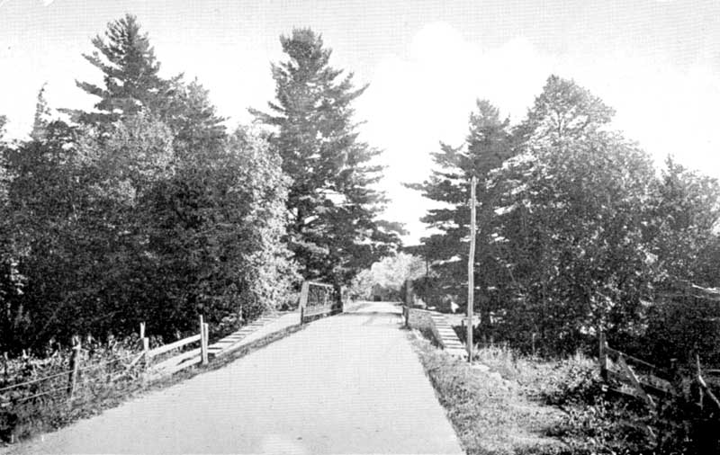 The Old Pines and bridge, Canadensis
