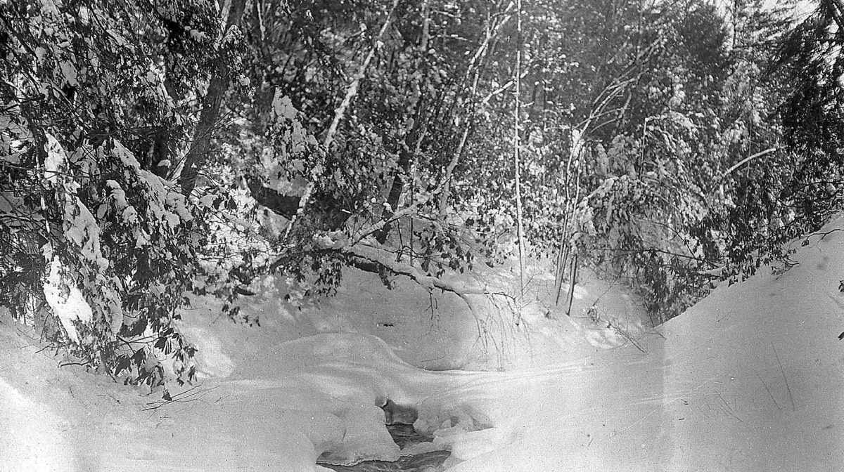 The upper glen at Buck Hill Falls near Cresco, circa 1914.